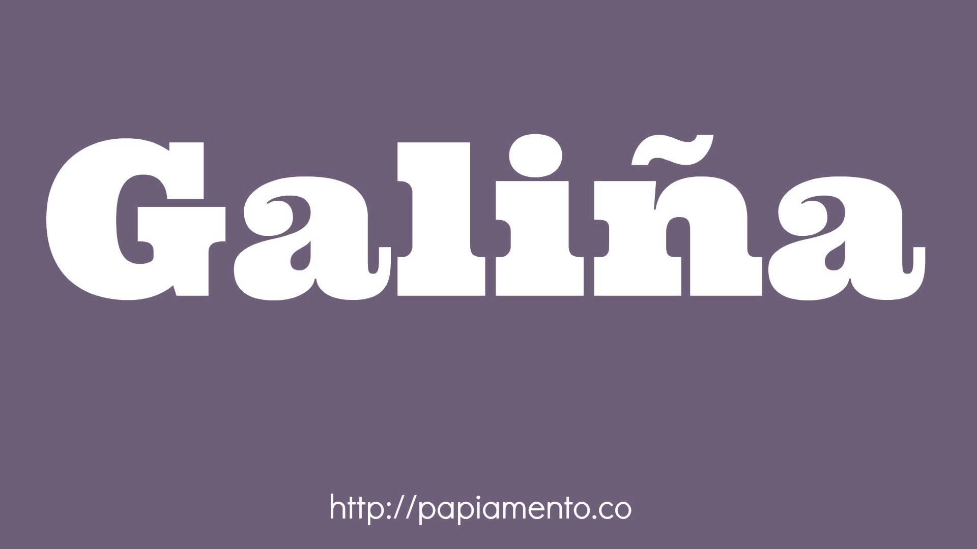 Zo zeg je kip in Papiamentu, galiña - Papiamentu.co