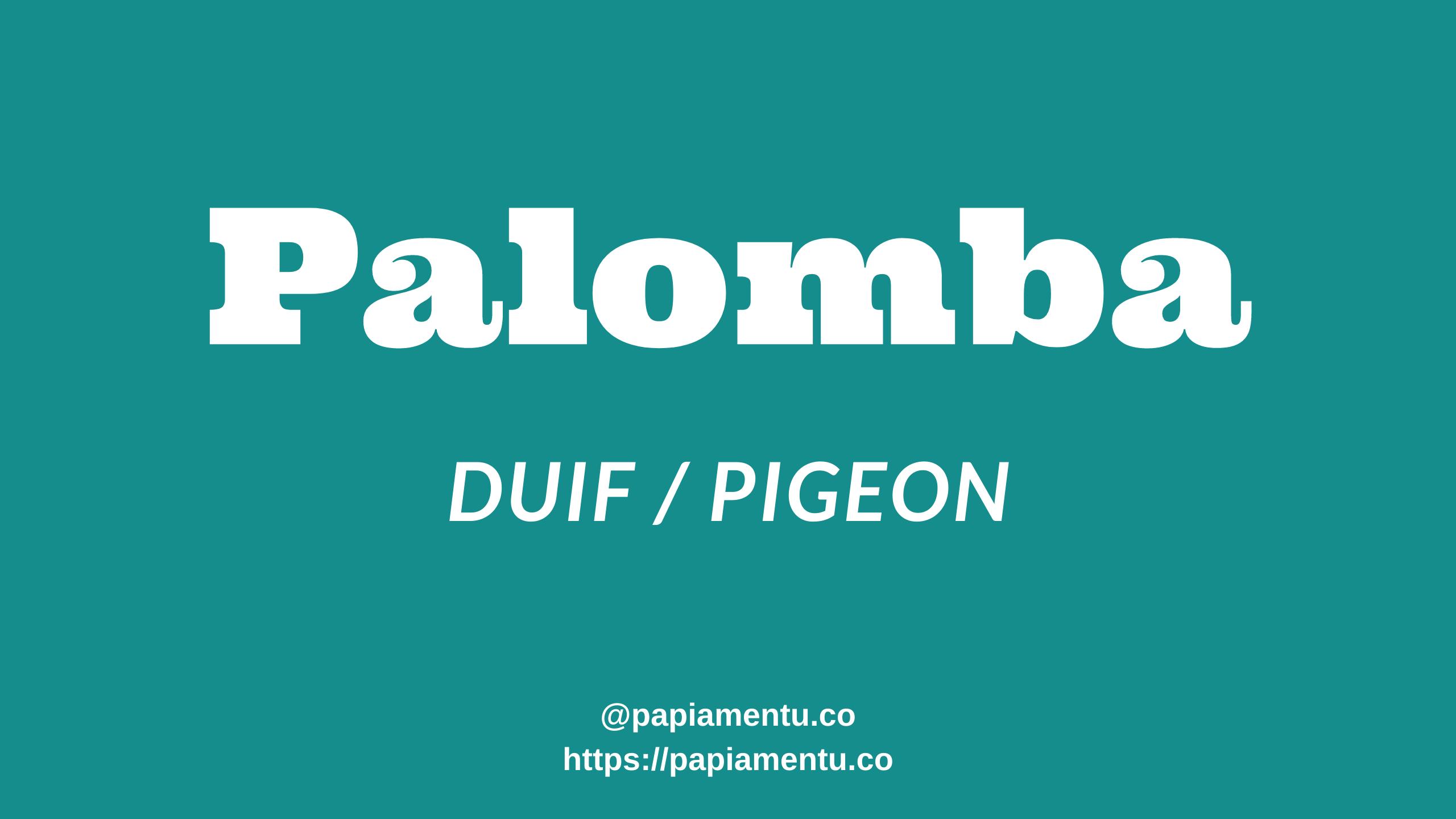 Zo zeg je Palomba in Papiamentu