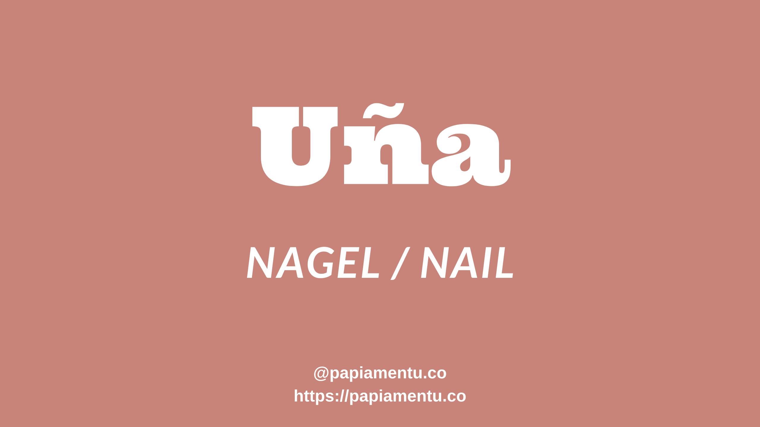 Nail / Nagel / Uña in Papiamentu / Papiaments